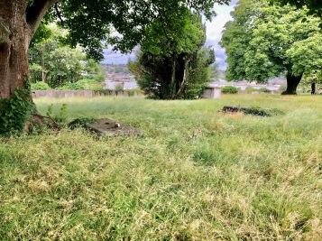 MMM_St Margaret's Meadow (Natalie Poulton)