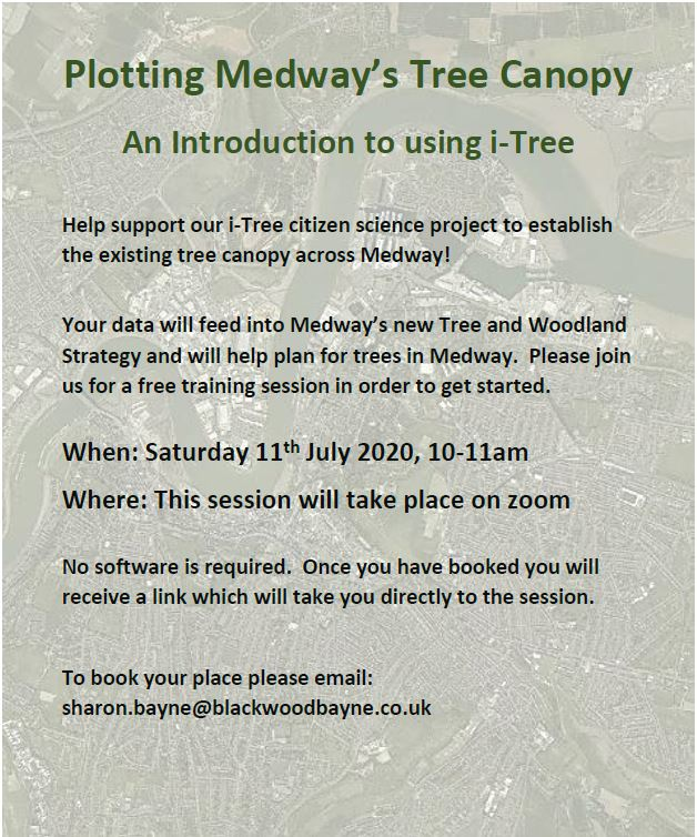 Plotting Medway's Tree Canopy poster